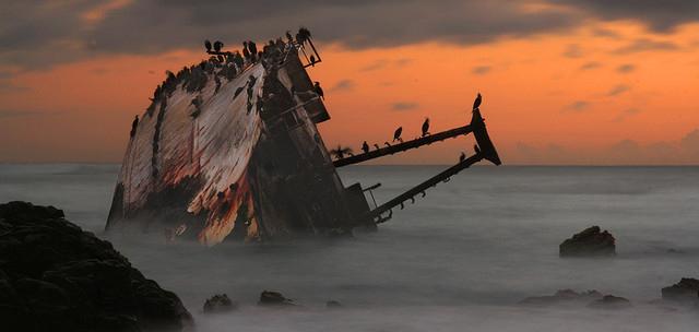 Risultati immagini per noli marittimi commercio